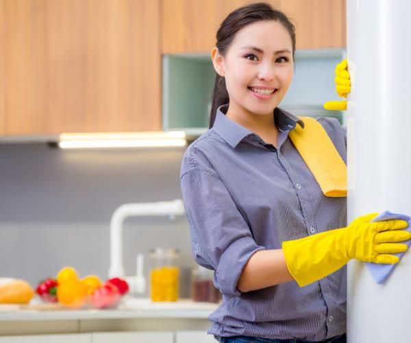 limpieza-hogar-organico-lapazbcs